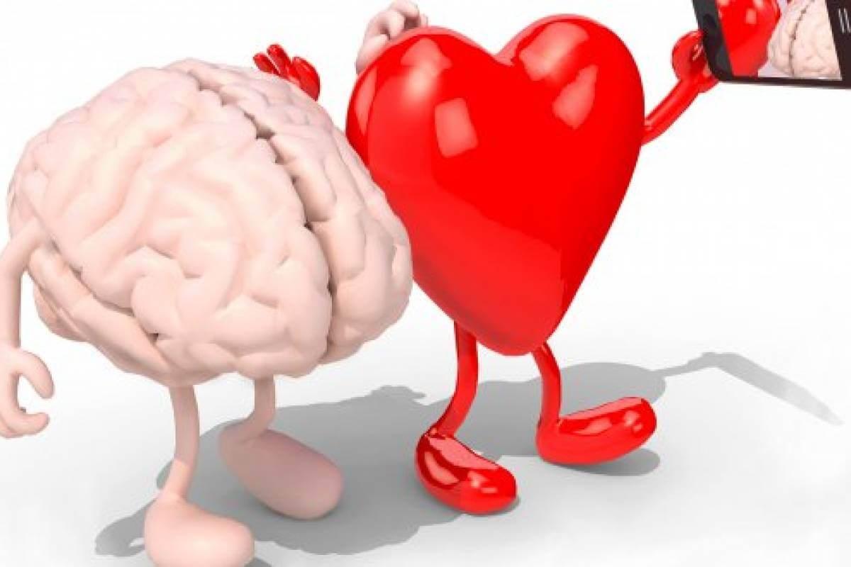 cerebro piscocorporal